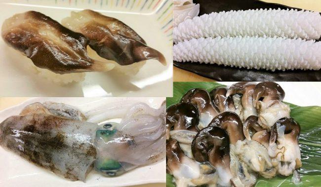 生鳥貝とアオリイカ